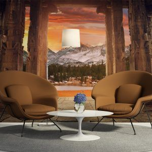 Living room with classic chairs, icons of american modern design